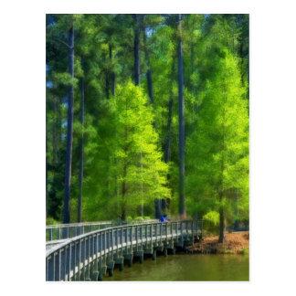 Callaway Landscape Postcard
