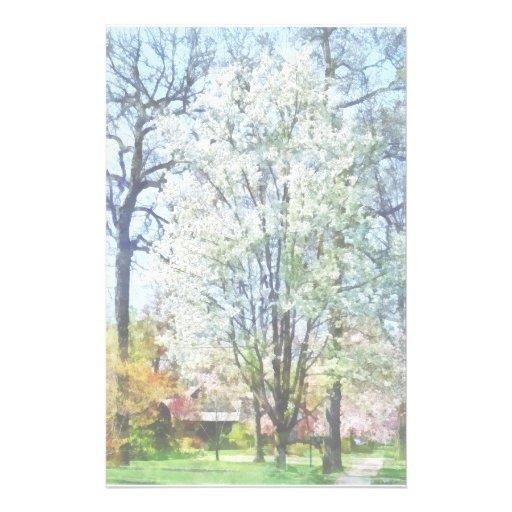 Calle con los árboles florecientes blancos papelería personalizada