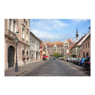 Calle de Fortuna en distrito del castillo en Budap Arte Con Fotos
