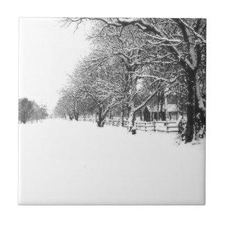 Calle de la conferencia en el pleno invierno azulejo cuadrado pequeño