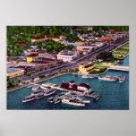 Calle de la playa de la opinión aérea de Daytona B Posters