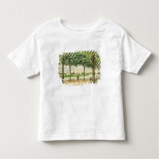 Calle de los árboles de castaña española por el poleras