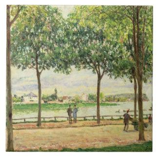 Calle de los árboles de castaña española por el rí azulejo cuadrado grande