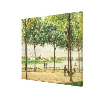 Calle de los árboles de castaña española por el rí lienzo envuelto para galerias