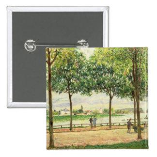 Calle de los árboles de castaña española por el rí pin cuadrado