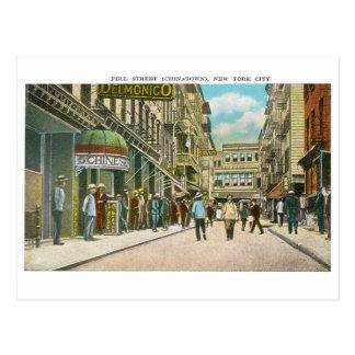 Calle de Pell (CHINATOWN), New York City (vintage) Postal
