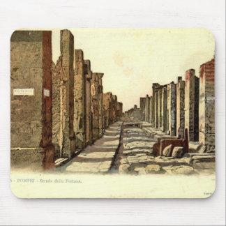 Calle de Pompeya, Fontana Alfombrilla De Raton