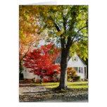 Calle del otoño con el árbol rojo felicitaciones