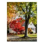 Calle del otoño con el árbol rojo postal
