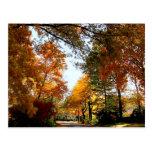 Calle del pueblo en otoño postales