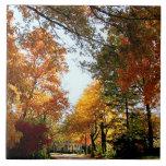 Calle del pueblo en otoño teja