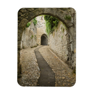 Calle gris del guijarro, Francia Imán Foto Rectangular