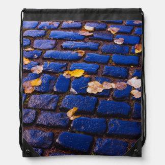 Calle púrpura y azul del guijarro mochilas