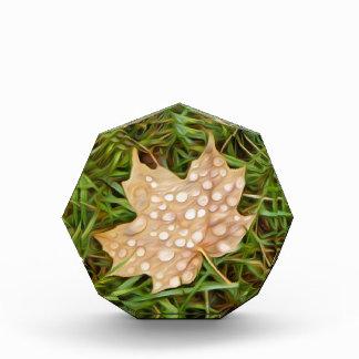 called leaf with dew drops acrylic award