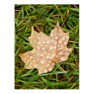 called leaf with dew drops postcard