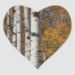 Callejón de Aspen en pegatina del corazón de Orane