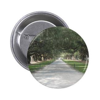 Callejón del roble en Boone Pasillo, botón del SC  Pin