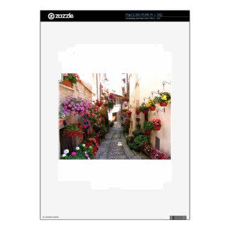 Callejones de Windows, del balcón y de la flor Skins Para iPad 2