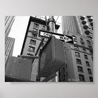 Calles de Nueva York Póster