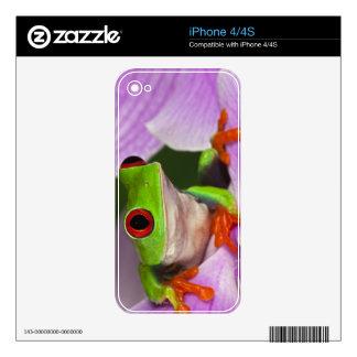 Callidryas de Agalychnis Skins Para eliPhone 4S
