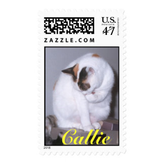 Callie Cleaning Stamp