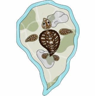 Callie la escultura de la foto de la tortuga de ma fotoescultura vertical