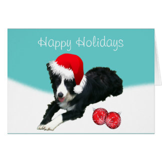 Callie the Border Collie Holiday Wishes Card