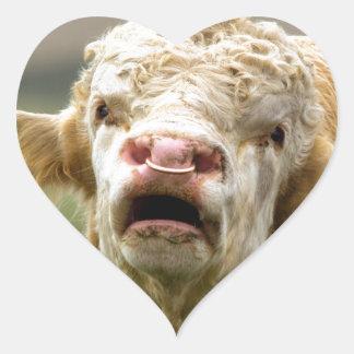 Calling Bull Heart Stickers