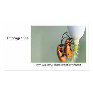 Calling card Photographer R.P Double-Sided Standard Business Cards (Pack Of 100)