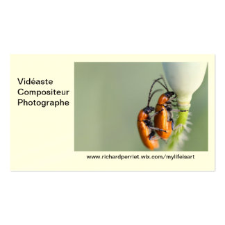 Calling card R.P Double-Sided Standard Business Cards (Pack Of 100)