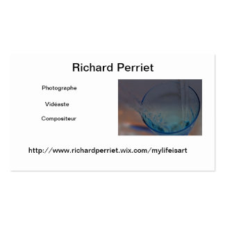 Calling card toilets R.P Double-Sided Standard Business Cards (Pack Of 100)