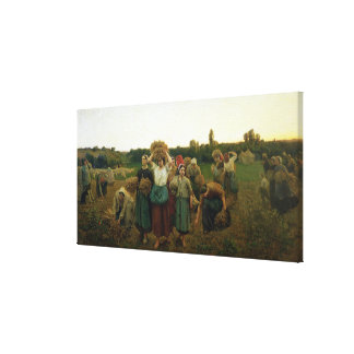 Calling in the Gleaners, 1859 Canvas Print