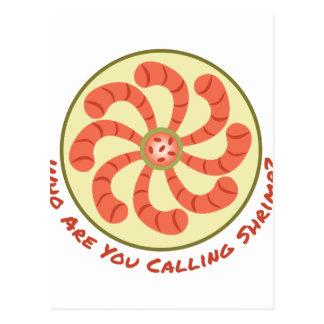 Calling Shrimp Postcard