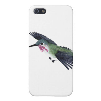 Calliope Hummingbird Cover For iPhone SE/5/5s