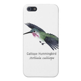 Calliope Hummingbird with Name Cases For iPhone 5