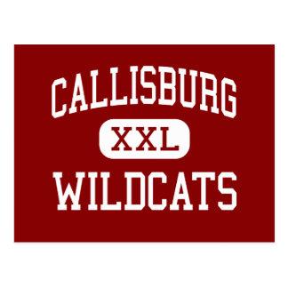 Callisburg - gatos monteses - alto - Callisburg Tarjetas Postales