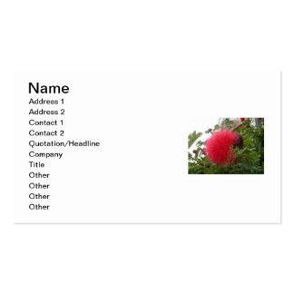 Callistemon Flower Business Card