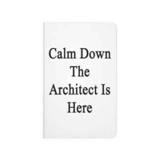 Calm Down The Architect Is Here Journals