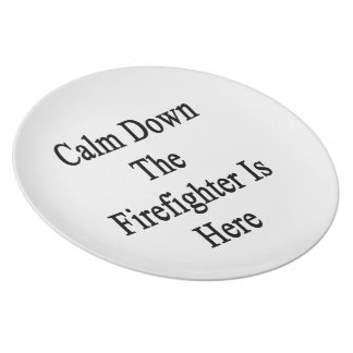 Calm Down The Firefighter Is Here Party Plate