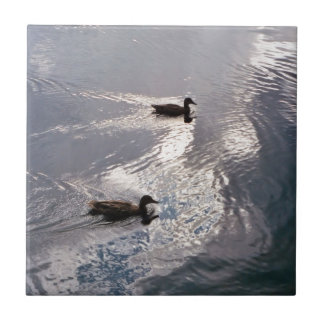 Calm Ducks Before the Storm Small Square Tile