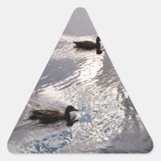 Calm Ducks Before the Storm Triangle Sticker