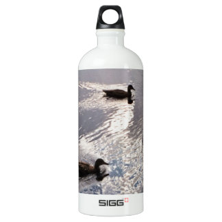 Calm Ducks Before the Storm Water Bottle