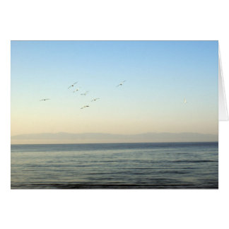 Calm Morning Ocean Banderas Bay Card