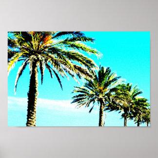 calm palm poster