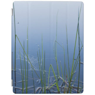 Calm water and spiderwebs iPad cover