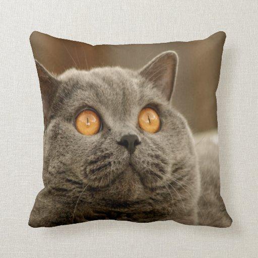 Calma y alegría británicas de la paz del gato de S Almohada