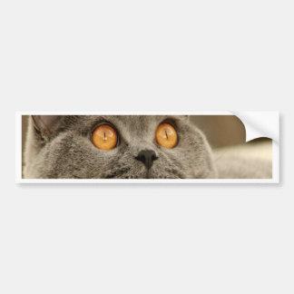 Calma y alegría británicas de la paz del gato de S Pegatina Para Auto