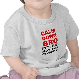 Calme abajo el bro camisetas