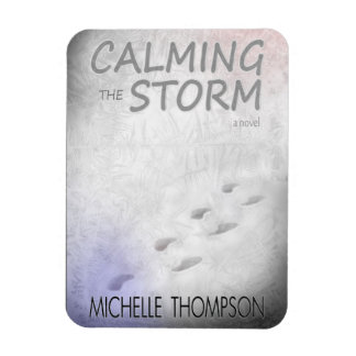 "Calming the Storm 3""x4"" Photo Magnet"