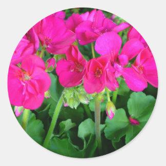 Calor floral pegatina redonda